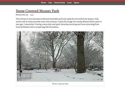 WordPress Theme: Simple Catastic image