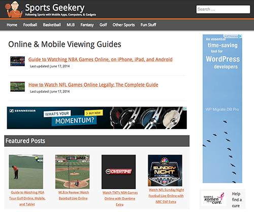 Custom WordPress Theme for SportGeekery.com image